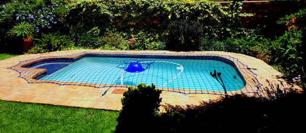 Swimming Pool Net Edenvale